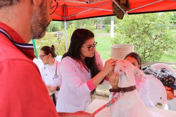 Parque Centenário  recebe 2ª edição de consultas veterinárias gratuitas