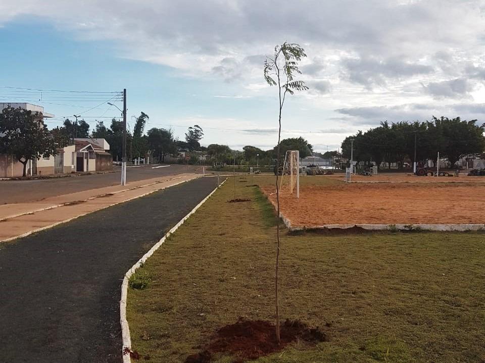 Gestão Heliton do Valle dá início a projeto pioneiro de arborização urbana em Itararé (SP)