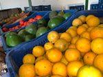 Prefeitura de Itararé (SP) inicia distribuição de kits de verduras a pessoas em situação de vulnerabilidade